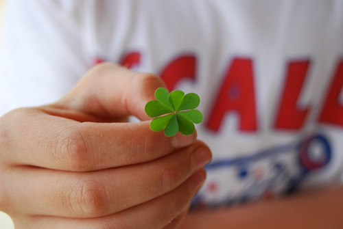 Four leaf clover | by tpadgett97