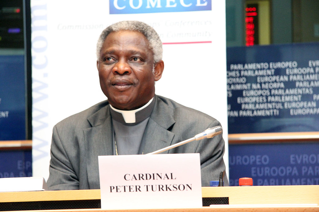 Image result for cardinal turkson