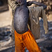 Young boy stretching while foraging in the village dump - Djenne, Mali