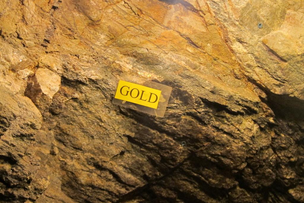 Gold Miners Colorado Gold Mine | Colorado