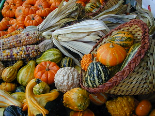 Gourds-A-Plenty | by Don & Janet Beasley ~ #BeaslePunk