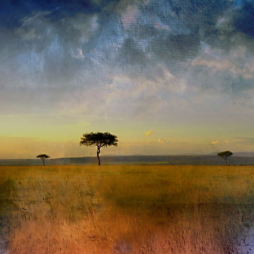 Scent of Africa | by Alda Cravo Al-Saude
