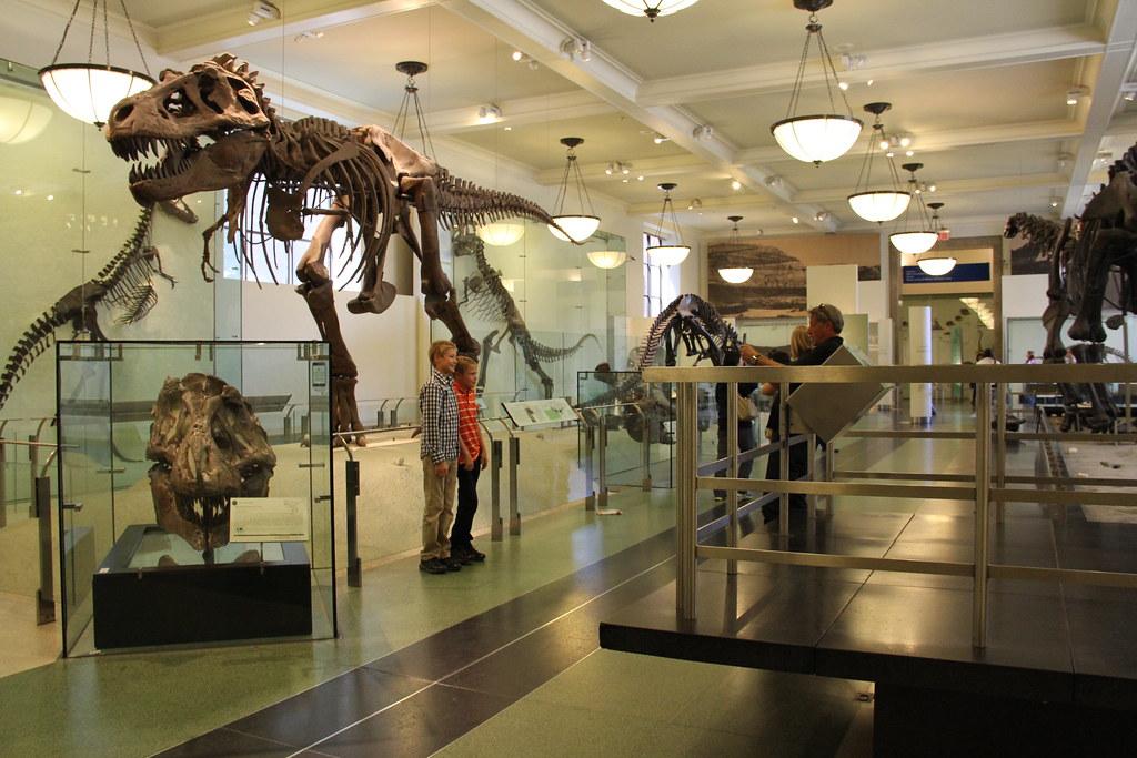 Natural History Museum Nyc Jobs