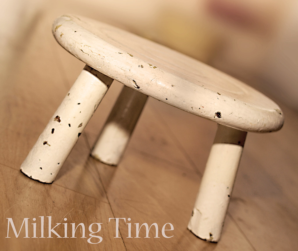 Milking Time An Old Milking Stool Which Stands A Whole 6