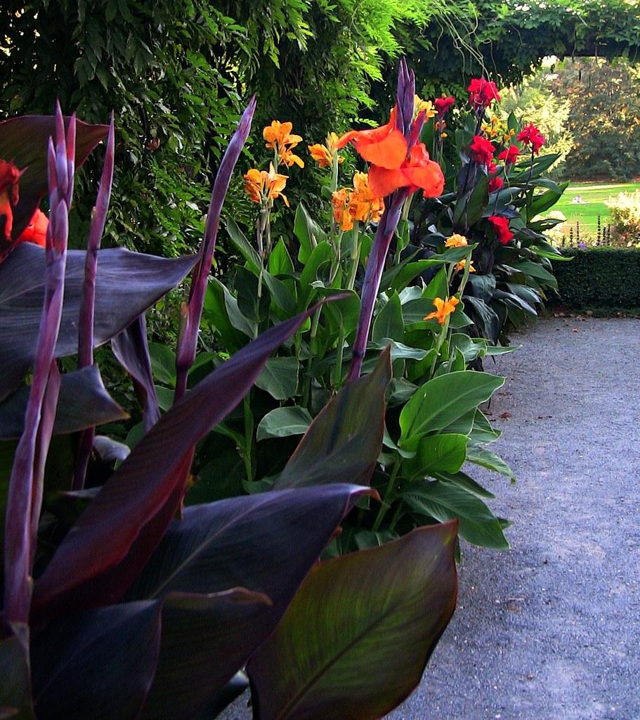 Garten Stuttgart: Stuttgart-Hohenheim, Exotischer Garten, Am Spielhaus 23-55