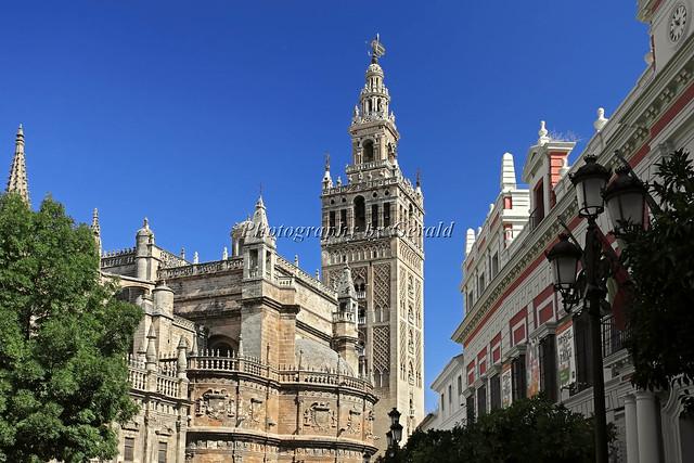 La Giralda y la Catedral de Sevilla  Flickr - Photo Sharing!
