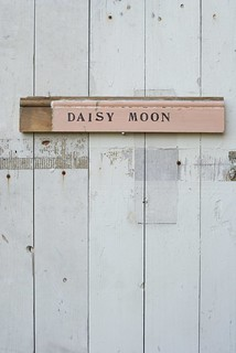 wood & word sign [daisy moon] | by wood & wool stool