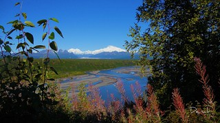 I fell in love with Denali - mountains - Alaska - landscape | by blmiers2