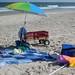 Assateague National Seashore: Our Spot