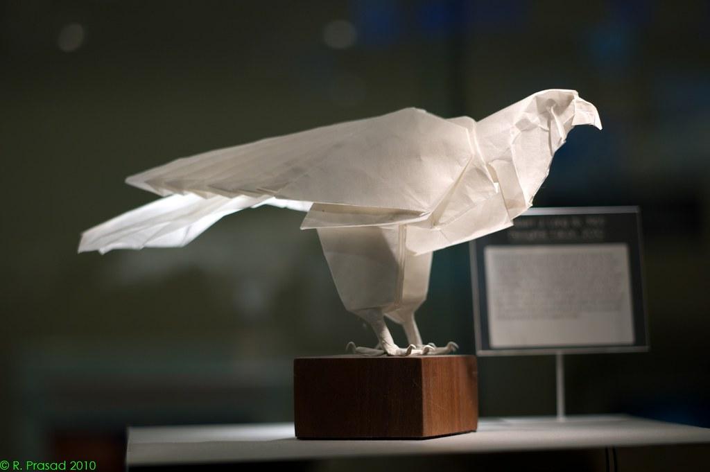 Robert J Lang Falcon