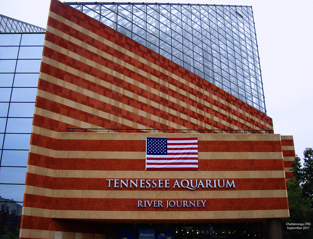 Tennessee Public Aquarium : Tennessee Aquarium -- Chattanooga (TN) September 2011 Flickr - Photo ...