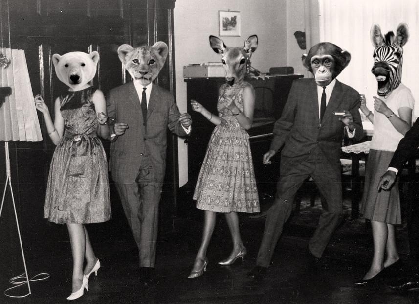 Hasil carian imej untuk wild party