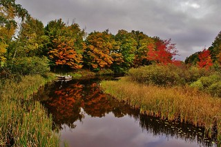 Early Fall Reflections | by chumlee10