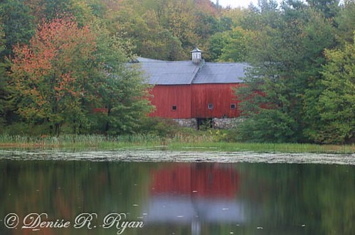Jaquith Rd Barn_039 | by Denise Ryan Photography