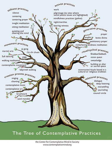 Tree of Contemplative Practices | by Editor B