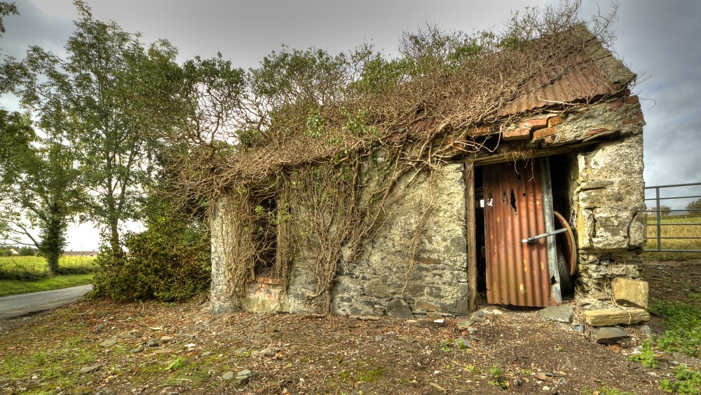 The Cottiers Cabin A Typified And Long Since Abandoned