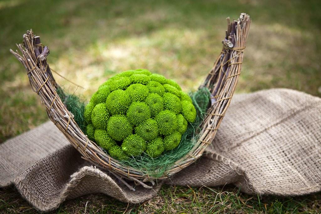 green santini chrysanthemum ball