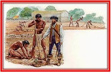 Abuso del esclavo - 1 part 1