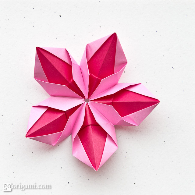 How To Make Lotus Origami Instructions