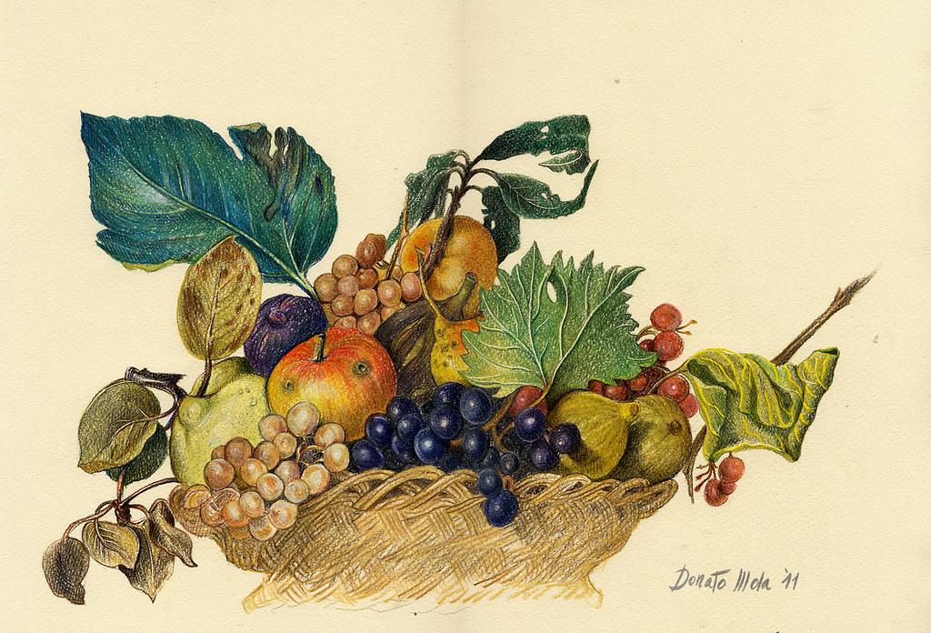 Canestra di frutta caravaggio blogged in italian here flickr for Cesto di frutta disegno