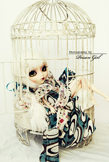 **Caged Princess** | by -Poison Girl-