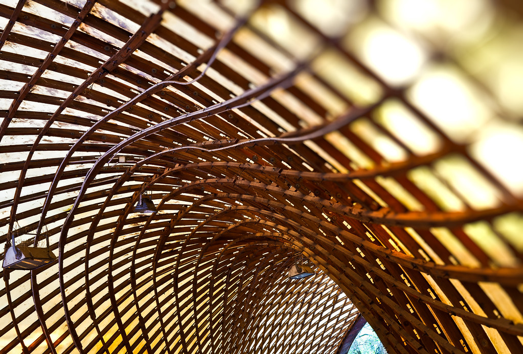 Form And Function A Gridshell Is A Structure Which