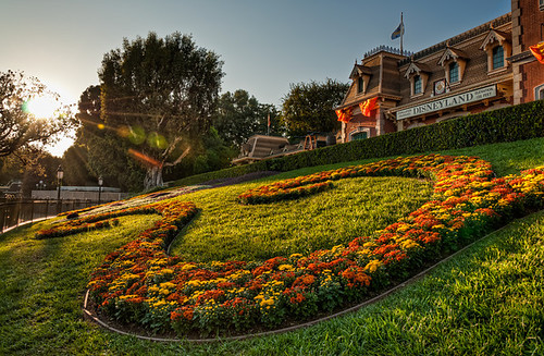 The Colors of Fall at Disneyland | by Tours Departing Daily