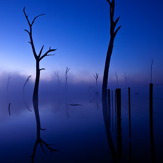 Nagambie Morning | by Kath W.
