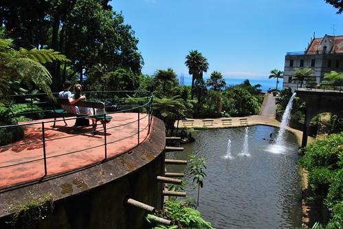 Giardino tropicale funchal madeira portogallo 07 2010 - Giardino tropicale ...