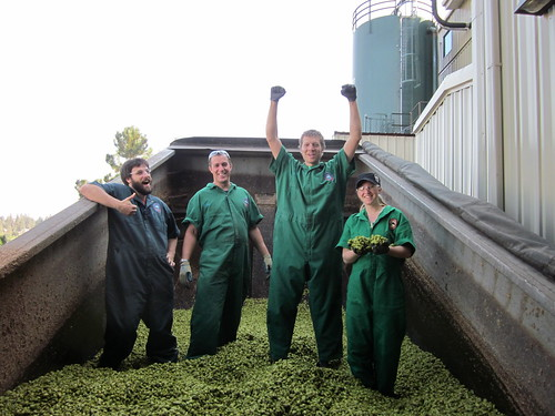 Brewers Shoveling the Hops | by DeschutesBrewery