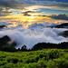 Sea of clouds in Mt. Hehuan 合歡雲海