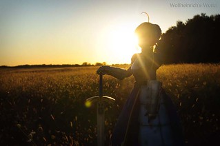 [Explore] Sunset Saber セイバー Dollfie Dream In Open Field | by Wolfheinrich