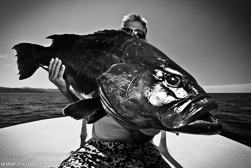Costa Rica, Fisherman with a Broomtail Grouper (Mycteroperca xenarcha) lit with an SB800 off camera flash and edited in black and white | by Nicola Zingarelli