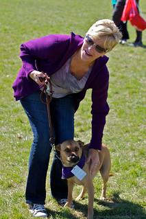 Vicky S Dog Grooming Wrexham