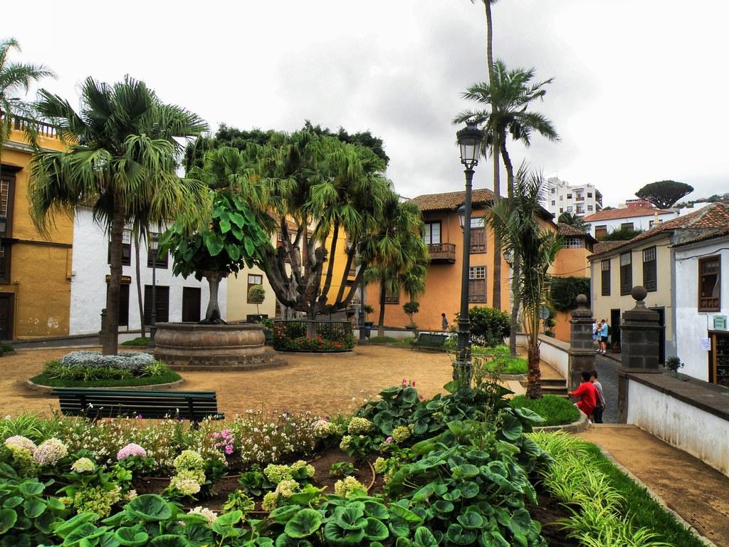 Icod de los Vinos (Tenerife, España)  Daniel Vinuesa  Flickr