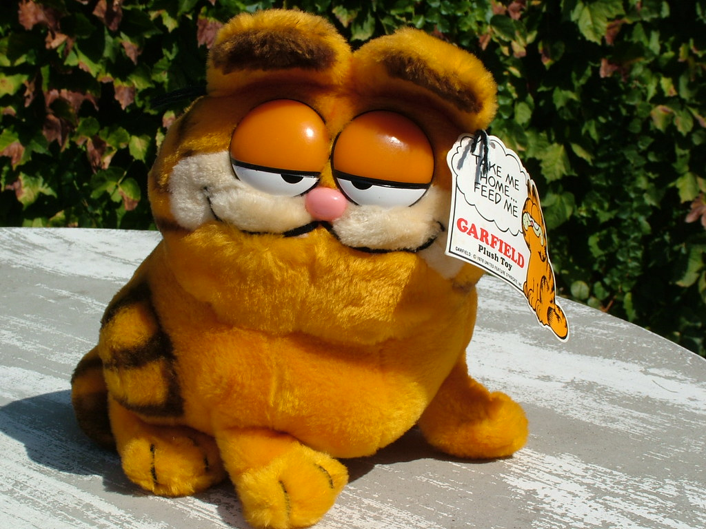 Garfield Stuffed Toy 1978 I Had This When I Was A Kid An Flickr