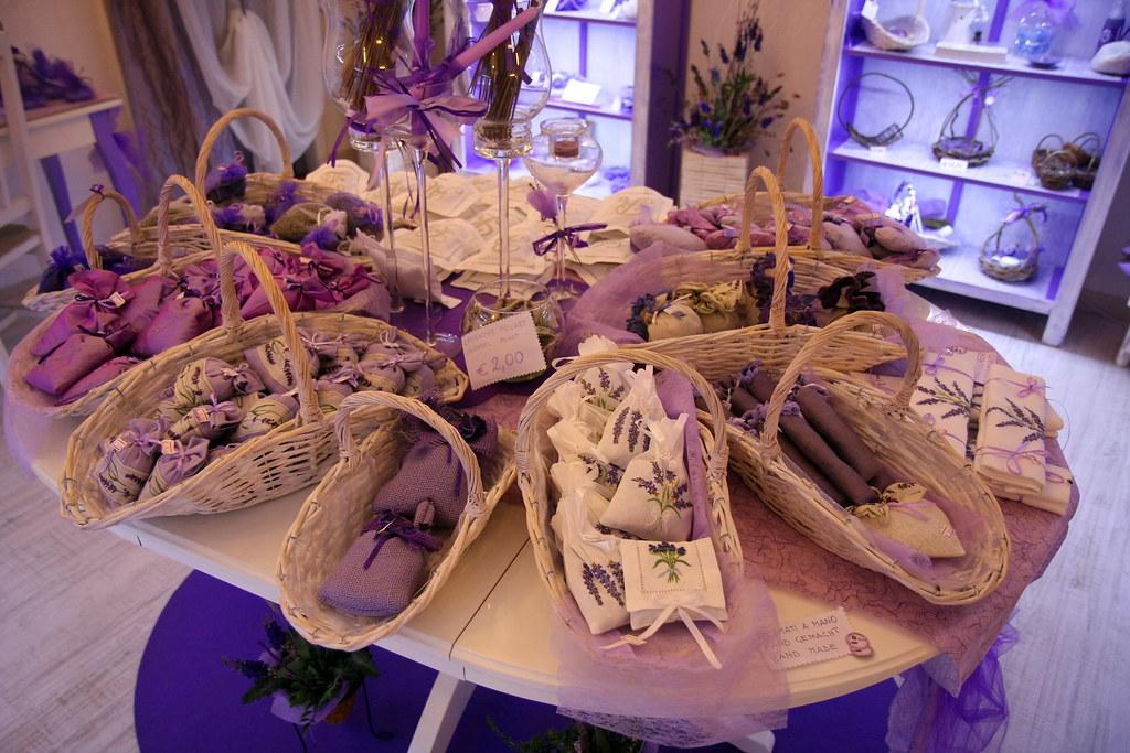 shop hoa lavender 3