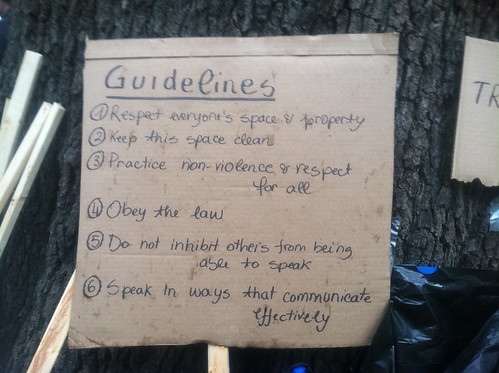 Guidelines for OccupyDC | by jcm_DC
