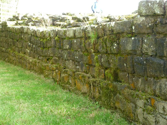 Curtain wall west of T48a