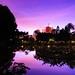 日出前的微光 翠湖