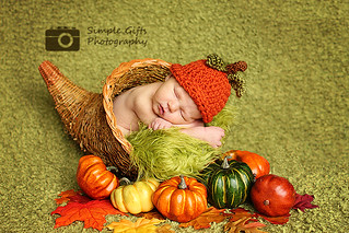 Welcome Fall | by simplegiftsphotography