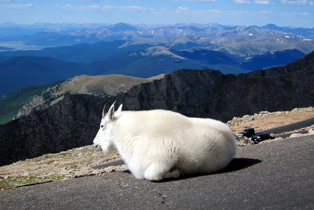 Colorado - Mount Evans...