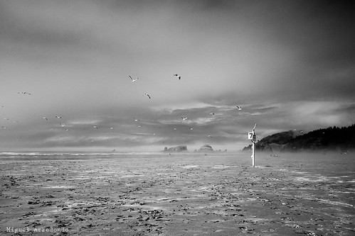 Cannon Beach, OR. | by arredomi