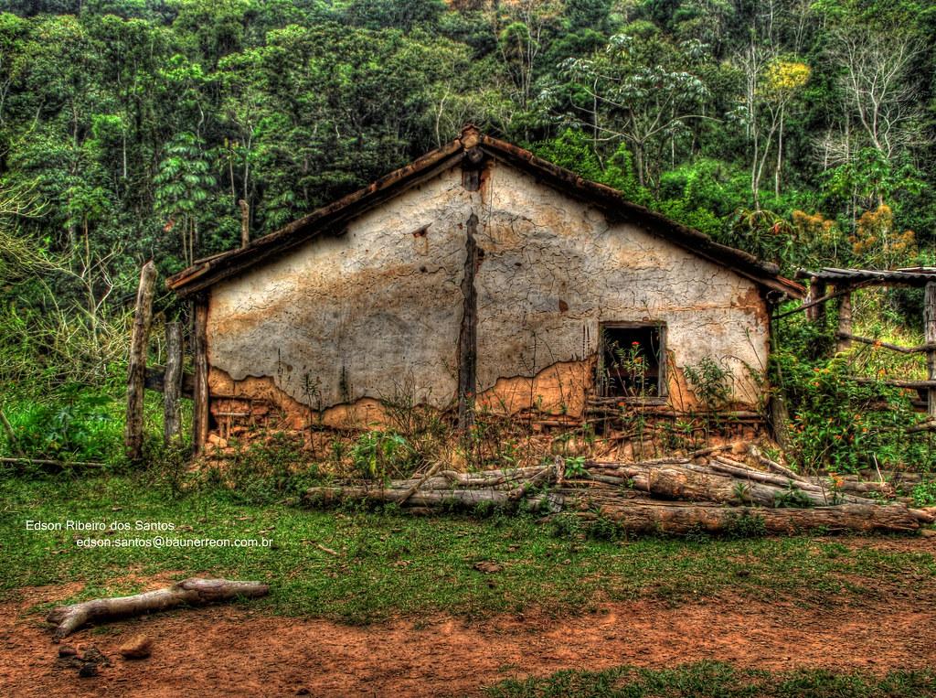 Excepcional Casa de Pau-a-pique | Pau-a-pique, também conhecida como tai… | Flickr EA58