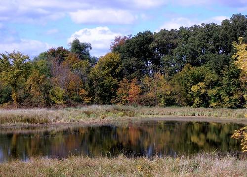 Lake Rebecca Park Reserve