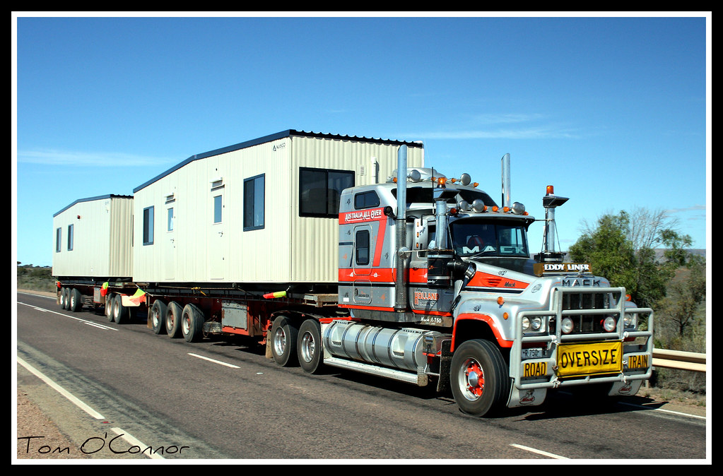 eddy holland eddy holland 39 s famous 39 39 eddy liner 39 39 heads no flickr. Black Bedroom Furniture Sets. Home Design Ideas