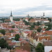 View from St. Olav's, Tallinn
