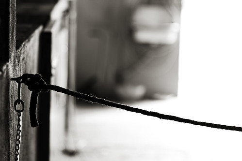 Stable Rope | by kirberich