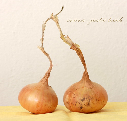 Onion in touch | by Ana Lukascuk