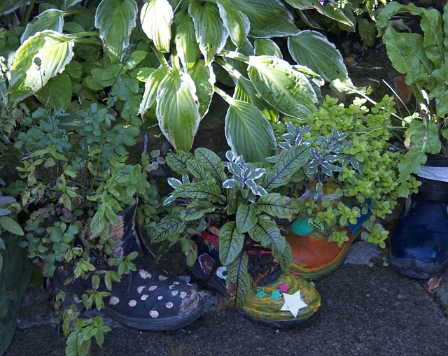 Planted boots